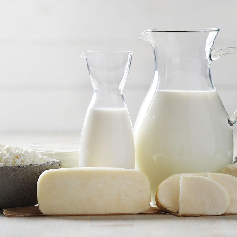 Dairy by Morton Controls